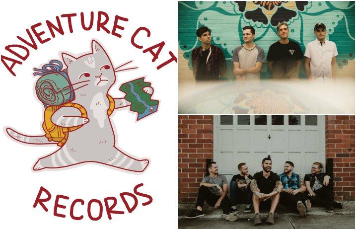 adventure_cat_records_capstan_summer_wars